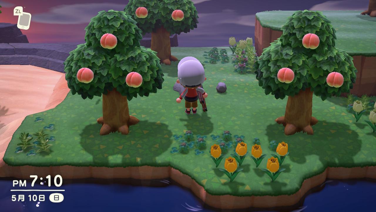 森 揃わ ない フルーツ あつ